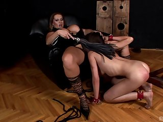 Bitches share their femdom fantasy to the whole world